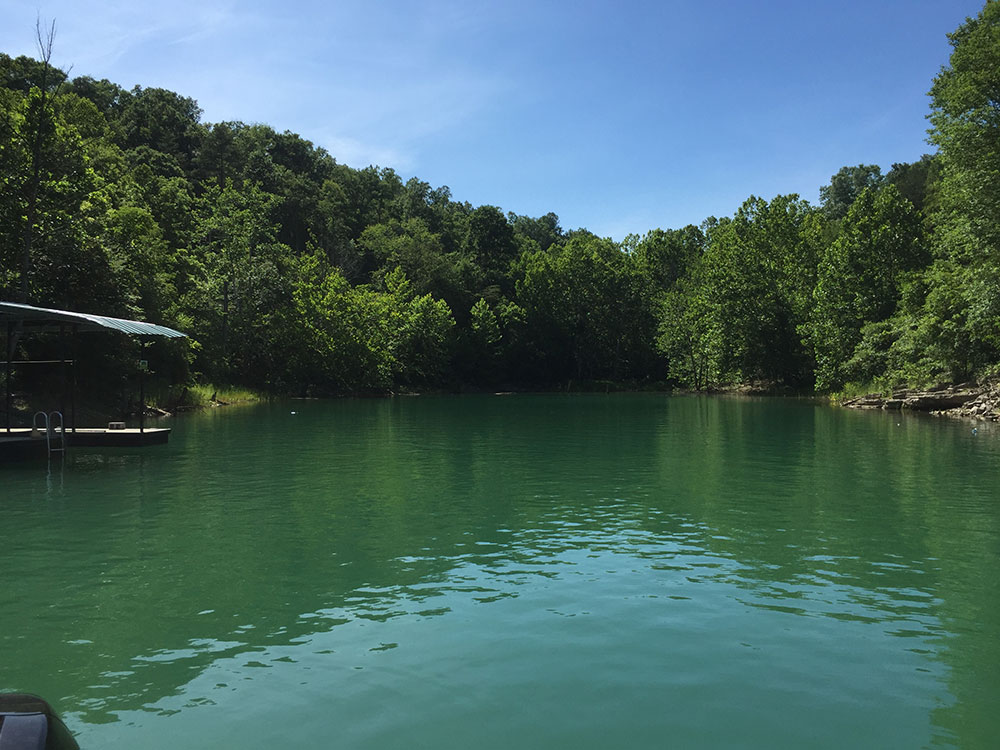Norris Lake Villas | Norris Lake Cabin Rentals | Rustic Heaven Lakeside Cabin View of Lake